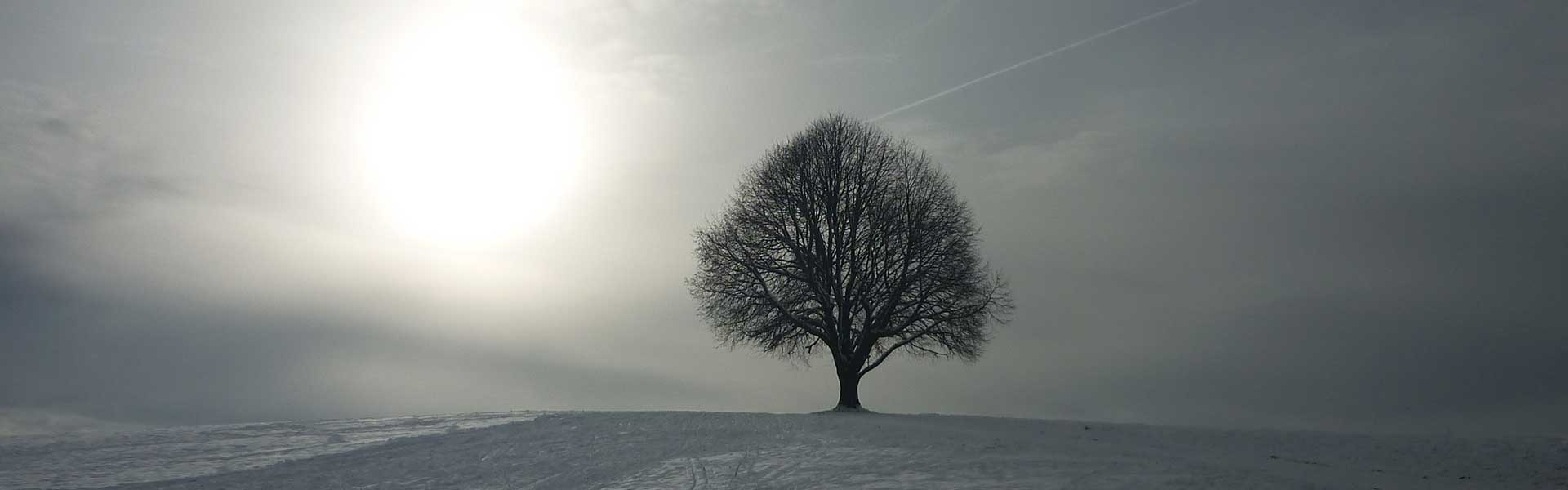 Header Wolfersdorf - Winter 1