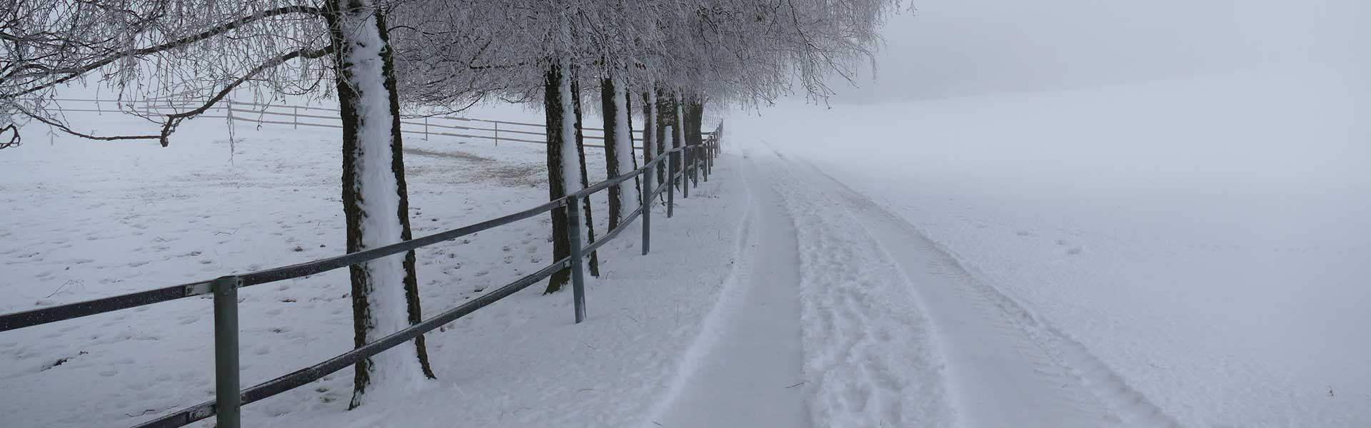 Header Wolfersdorf - Winter 2